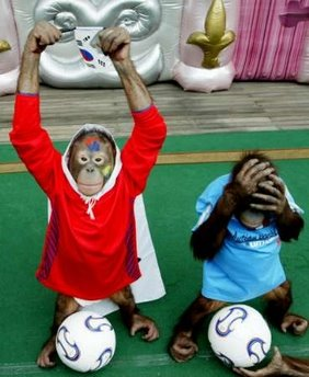 monkeys_playing_soccer_1278593917